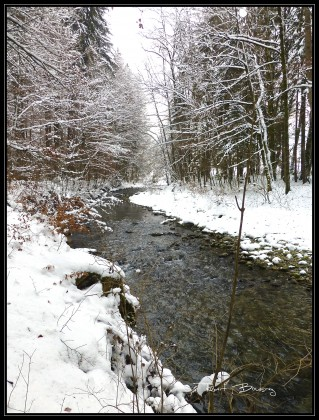 décor d' hiver