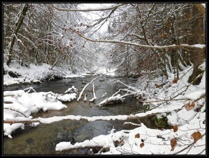 bord de l'eau sous la neige